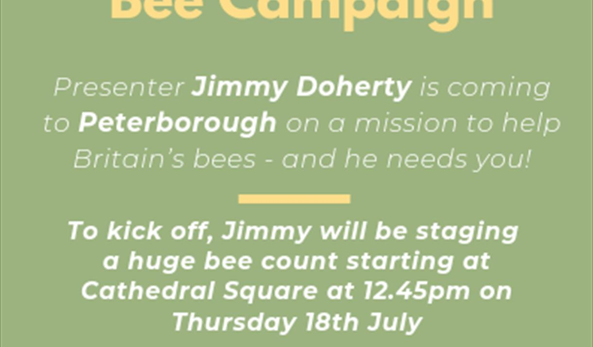 Channel 4 – 'Bee Count' in Peterborough
