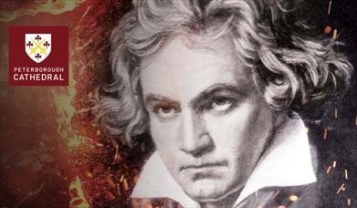 Beethoven: Ninth Symphony (Choral); Bernstein: Chichester Psalms